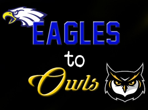 From Eagles to Owls