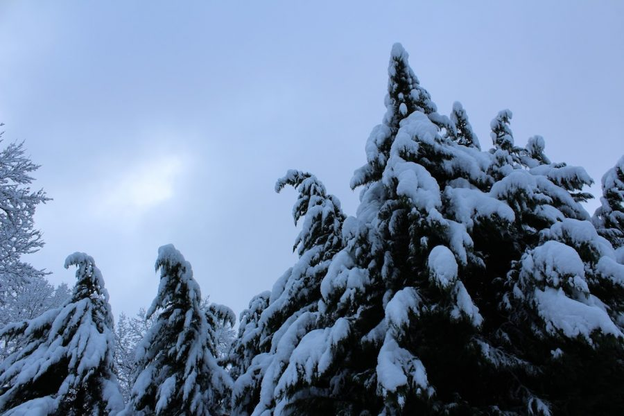 S'winter