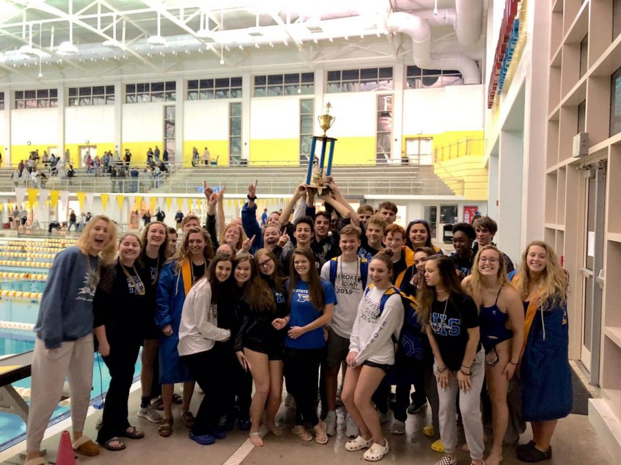 Eagles crush at county swim meet