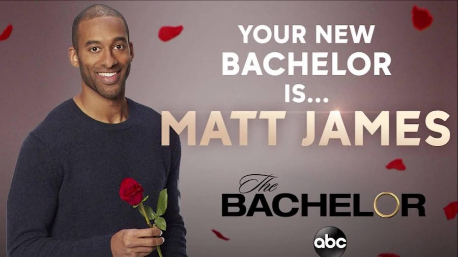 "A record-breaking season of ""The Bachelor"""
